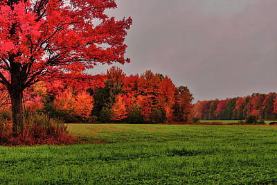 Art History Meets Fashion - A Rainy Colorful Wisconsin Autumn Afternoon by Dale Kauzlaric