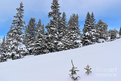 Uncle Sam Posters - A Snowy Scene 2 by Tonya Hance