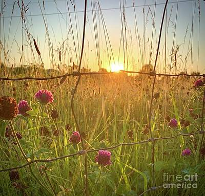 Photograph - A Tennessee Sunset by Long Love Photography