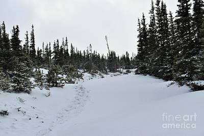 Thomas Kinkade Royalty Free Images - A Winter Hike Royalty-Free Image by Tonya Hance