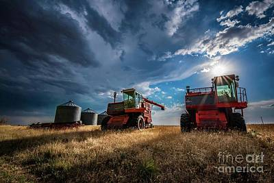 Fall Animals - Abandoned Combines  by Christopher Thomas