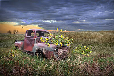 Lucille Ball - Abandoned Vintage Ford Truck with Blackeyed Susan Yellow Flowers by Randall Nyhof