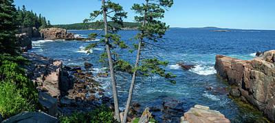 Photograph - Acadia National Park Maine by David Hintz