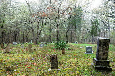Safari - Adwell Cemetery by Eric Glaser