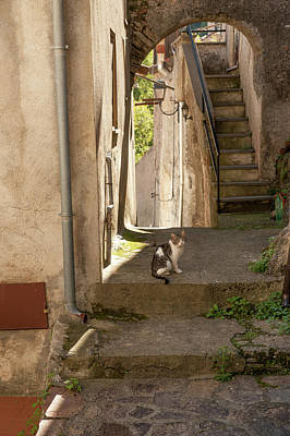 Photograph - Pictoresque in Calabria village by Flavio Massari