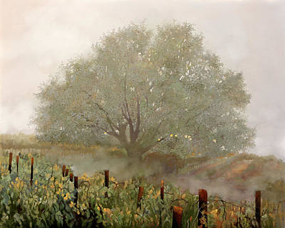 Royalty-Free and Rights-Managed Images - Albero Nebbioloso by Guido Borelli