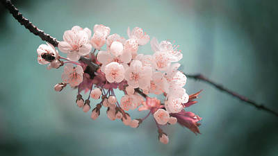 Surrealism Royalty-Free and Rights-Managed Images - Almond Blossom - Surreal Art by Ahmet Asar by Celestial Images