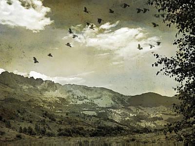Photograph - Alpe Bianca vintage by Cosmina Lefanto