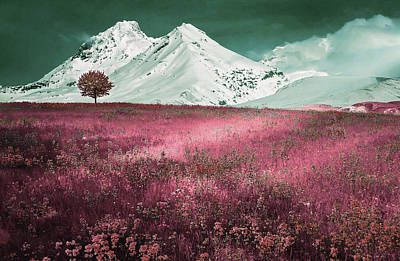 Surrealism Royalty Free Images - Alpine Meadow - Surreal Art by Ahmet Asar Royalty-Free Image by Celestial Images