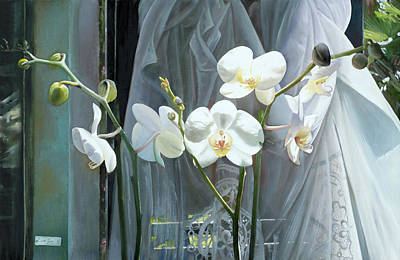 Royalty-Free and Rights-Managed Images - Altre Quattro Orchidee by Guido Borelli