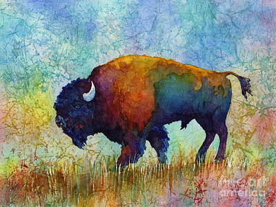 Blue Hues - American Buffalo 5 by Hailey E Herrera