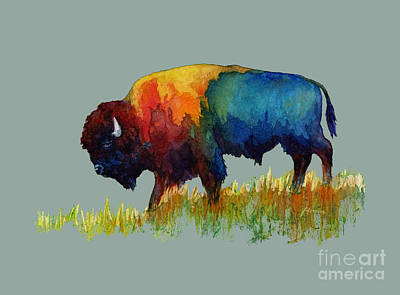 Farmhouse Rights Managed Images - American Buffalo III-solid background Royalty-Free Image by Hailey E Herrera