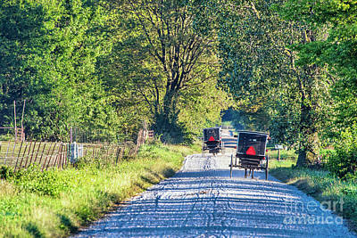 Lucille Ball - Amish Buggies on Rural Gravel Road  a   by David Arment