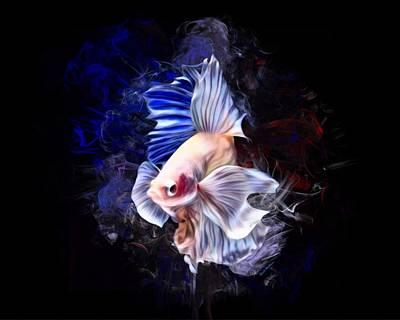 Animals Digital Art - An Albino Betta Fish Portrait by Scott Wallace Digital Designs