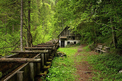 Photograph - An old mill in the middle of the forest by Stefan Rotter