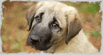 Photograph - Anatolian Shepherd Puppy I by SL Ernst