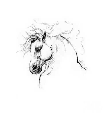 Animals Drawings - Andalusian horse drawing 1 by Angel Ciesniarska