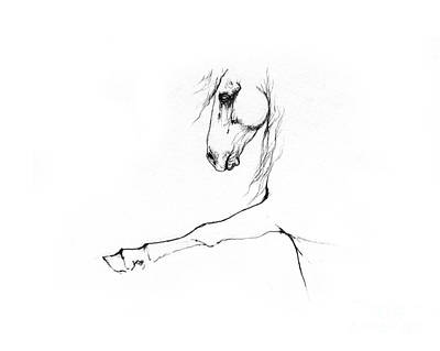 Animals Drawings - Andalusian horse portrait 2014 05 16 c by Angel Ciesniarska