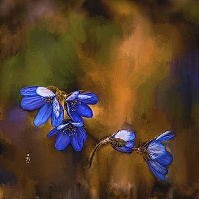 Mixed Media Royalty Free Images - Anemone hepatica #k9 Royalty-Free Image by Leif Sohlman