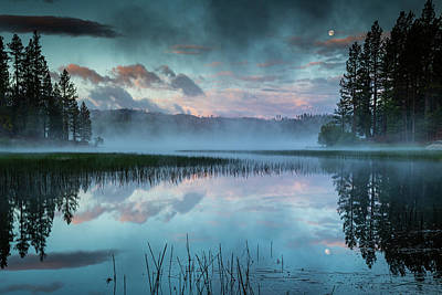 Moody Trees - Antelope Lake Reflective Dawn by Mike Lee