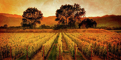 Patriotic Signs - Antique Vineyard at Dusk by Constance Reid