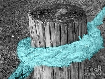 Abstract Animalia Royalty Free Images - Aqua Rope Royalty-Free Image by Mary Mikawoz