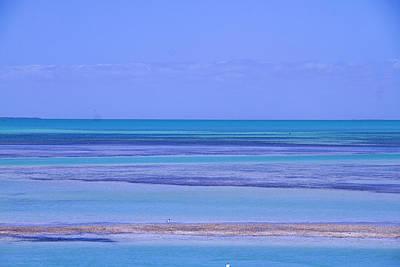 Photograph - Aquamarine Dream by Skyler Whitehead