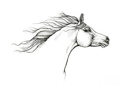 Animals Drawings - Arabian horse 2020 10 01 by Angel Ciesniarska