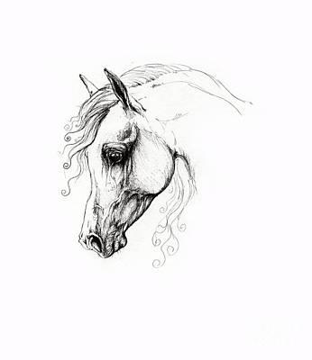 Animals Drawings - Arabian Horse Drawing 15 by Angel Ciesniarska
