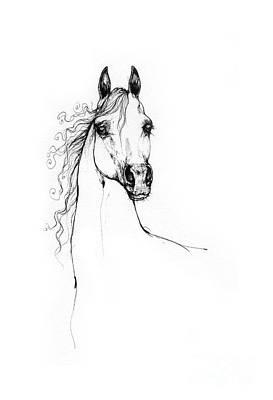 Animals Drawings - Arabian horse drawing 30 07 2013 by Angel Ciesniarska