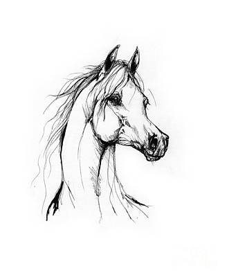 Animals Drawings - Arabian Horse Drawing 38 by Angel Ciesniarska