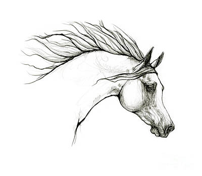 Vintage Buick Rights Managed Images - Arabian horse head 20 09 27 Royalty-Free Image by Angel Ciesniarska
