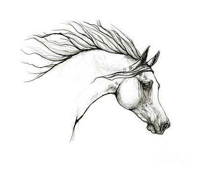 Animals Drawings - Arabian horse head 20 09 27 by Angel Ciesniarska