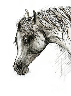 Animals Drawings - Arabian horse head 2020 02 14 by Angel Ciesniarska