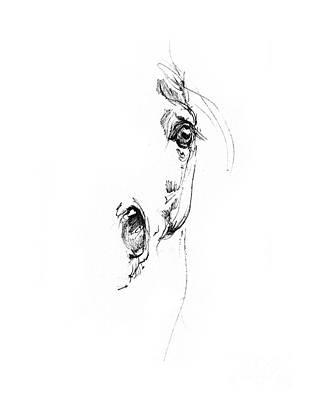 Animals Drawings - Arabian horse sketch 2014 05 24 h by Angel Ciesniarska