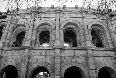Abstract Animalia - Arenes de Nimes France Photo 96 by Lucie Dumas