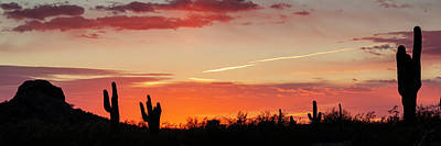 Design Pics - Arizona Desert Sunset Panorama by Teresa Wilson