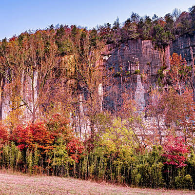 Landscapes Royalty-Free and Rights-Managed Images - Arkansas Roark Bluff Autumn Landscape 1x1 by Gregory Ballos