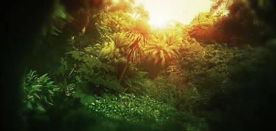 Digital Art - Art - Light in the Jungle by Matthias Zegveld