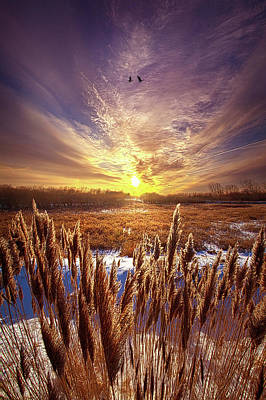 Royalty-Free and Rights-Managed Images - As Long as We are Together by Phil Koch