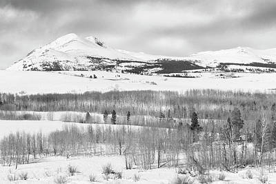 Claude Monet - Aspen Grove Winter by Joe Palermo
