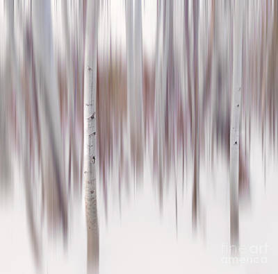 Fruits And Vegetables Still Life - Aspen Impressions #1 - The Ghosts of Tahoe by Francesco Emanuele Carucci