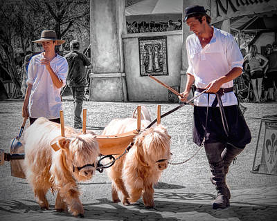 Photograph - At Renaissance Festival by Phyllis Stokes