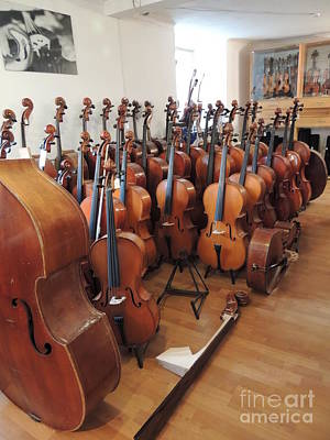 Water Droplets Sharon Johnstone - Attention Violines Germany Stugart by Diane Greco-Lesser