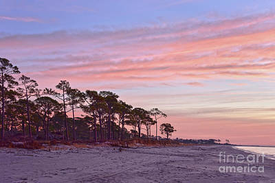 Animals Royalty-Free and Rights-Managed Images - Audubon Bird Sanctuary Beach at Dawn by Catherine Sherman