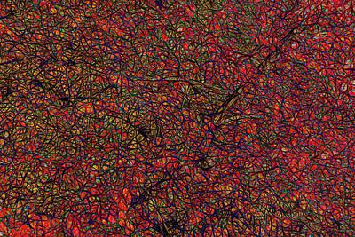 Studio Grafika Zodiac - Autumn Abstract by Marv Vandehey