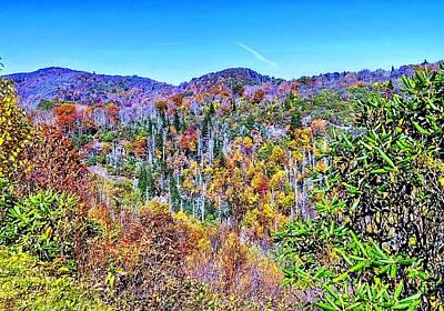 Photograph - Autumn Colors by Allen Nice-Webb