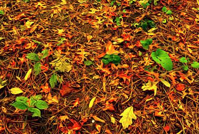Pop Art - Autumn Colors on the Forest Floor by Sandra J