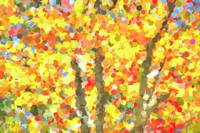 Moody Trees -  Autumn Colours Sleepy Hollow Art by David Pyatt