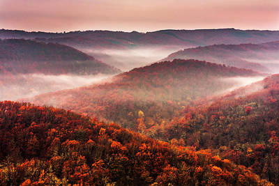 Fun Patterns - Autumn Fogs by Evgeni Dinev